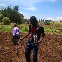 Farm kibiko 2016