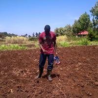 Farm kibiko 2016.jpg1